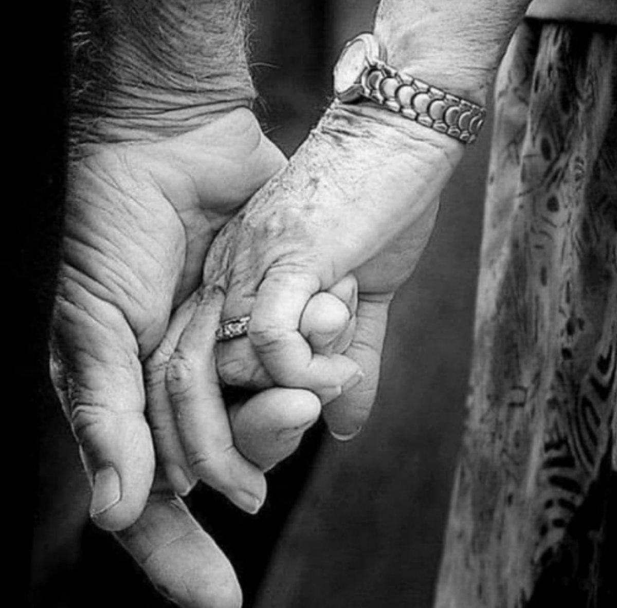  وفاداری ساده نبود درنبودنهایت… عشق تاوان داشت که دانه…